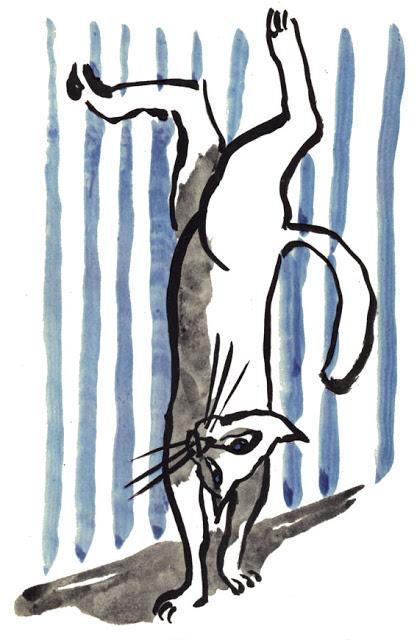 scialoia-gatta