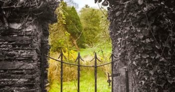 Marco Martella - Tornare al giardino