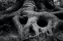 Neurostoria: Daniel Lord Smail - Storia profonda