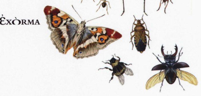 Lafcadio Hearn – Le farfalle danzano e le formiche si ingegnano