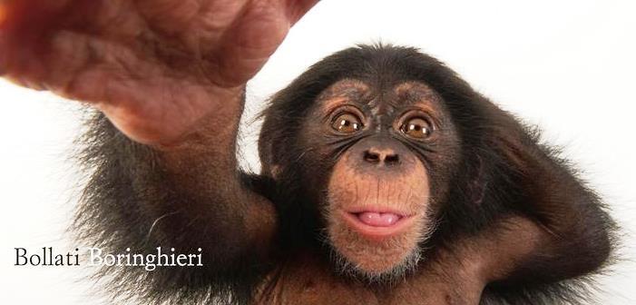 Jared Diamond – L'evoluzione dell'animale umano