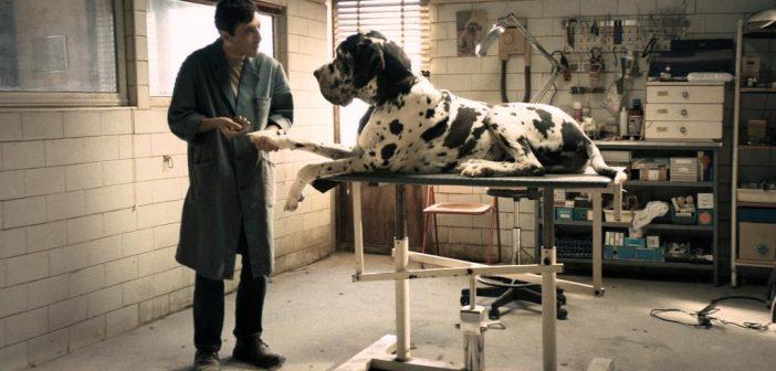 Matteo Garrone – Dogman