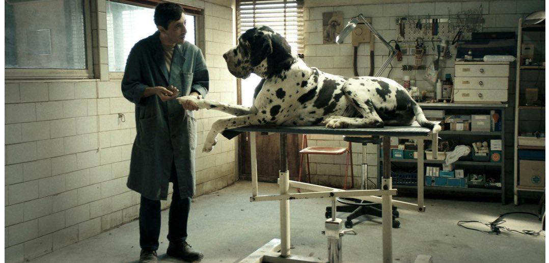 Cannes 71: Matteo Garrone - Dogman