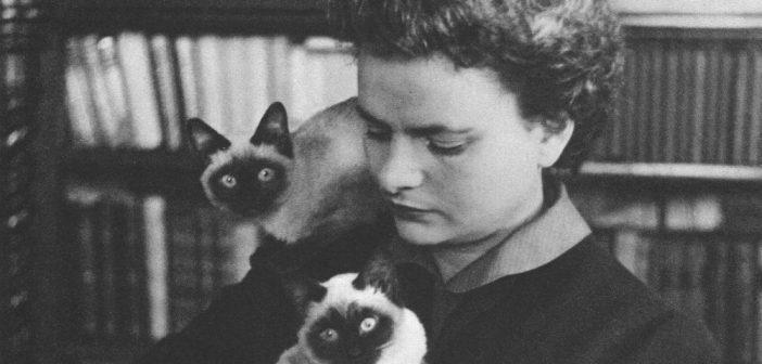 Cesare Cases rilegge Elsa Morante | Archivio